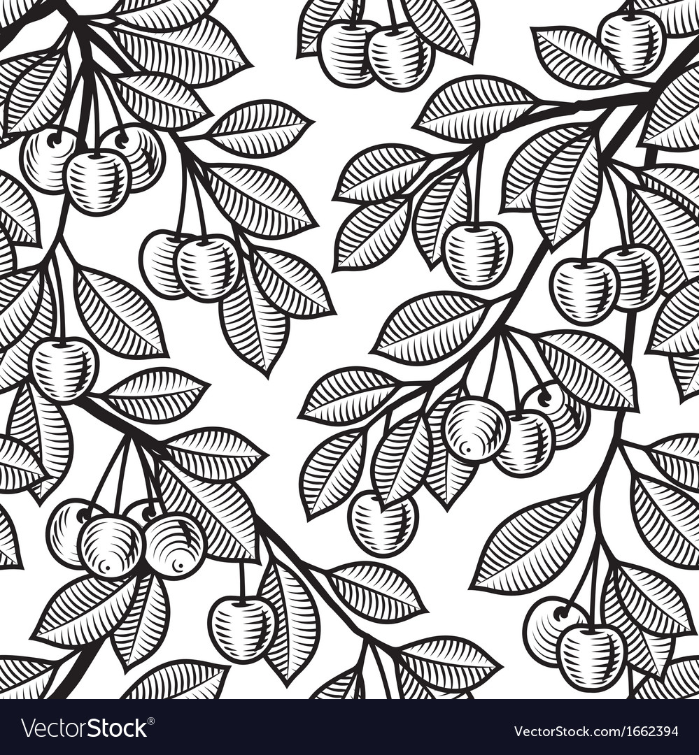 Seamless cherry background black and white vector image