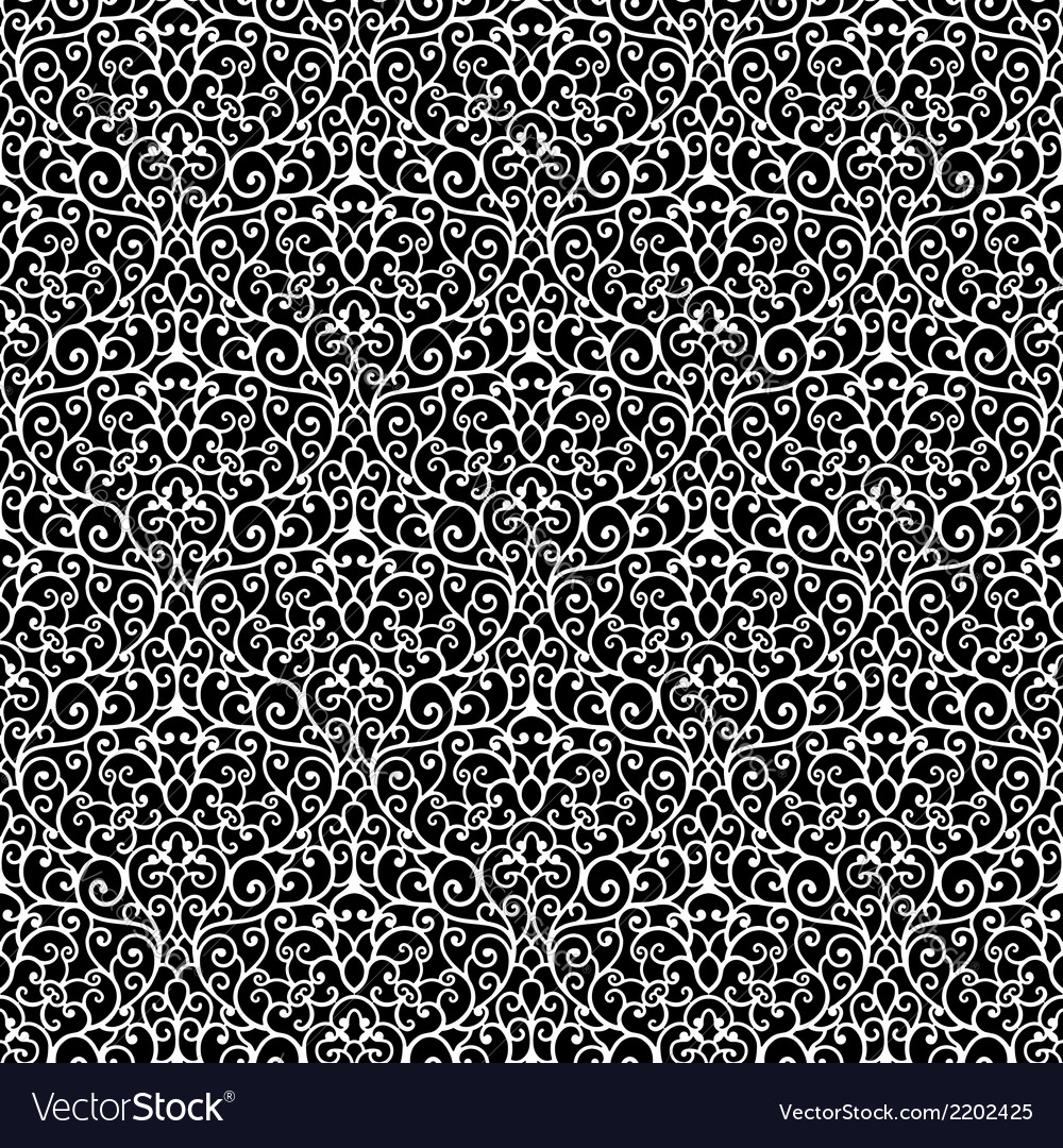 Black and white lace pattern vector image