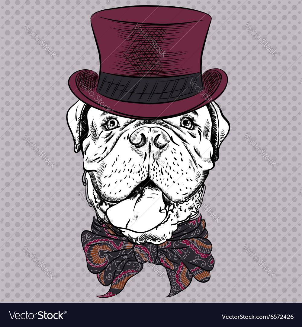 Funny cartoon hipster dog French Mastiff vector image