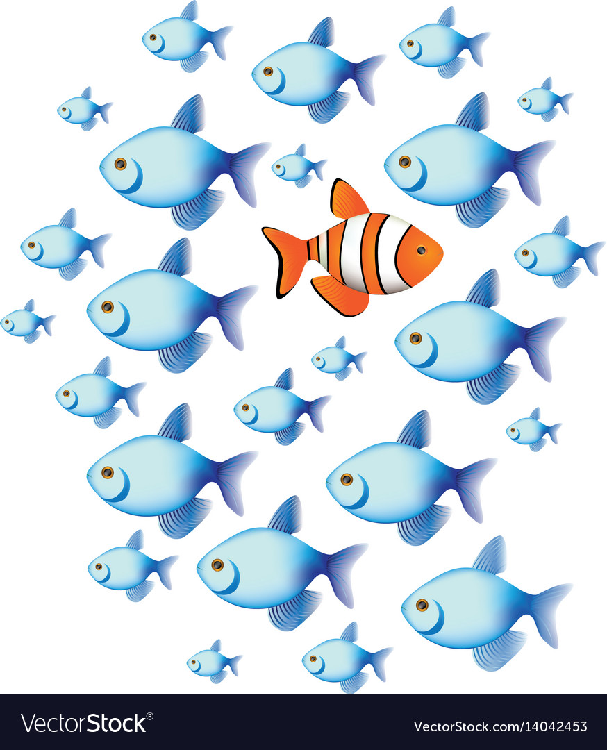Colorful set collection fish aquatic animal with vector image