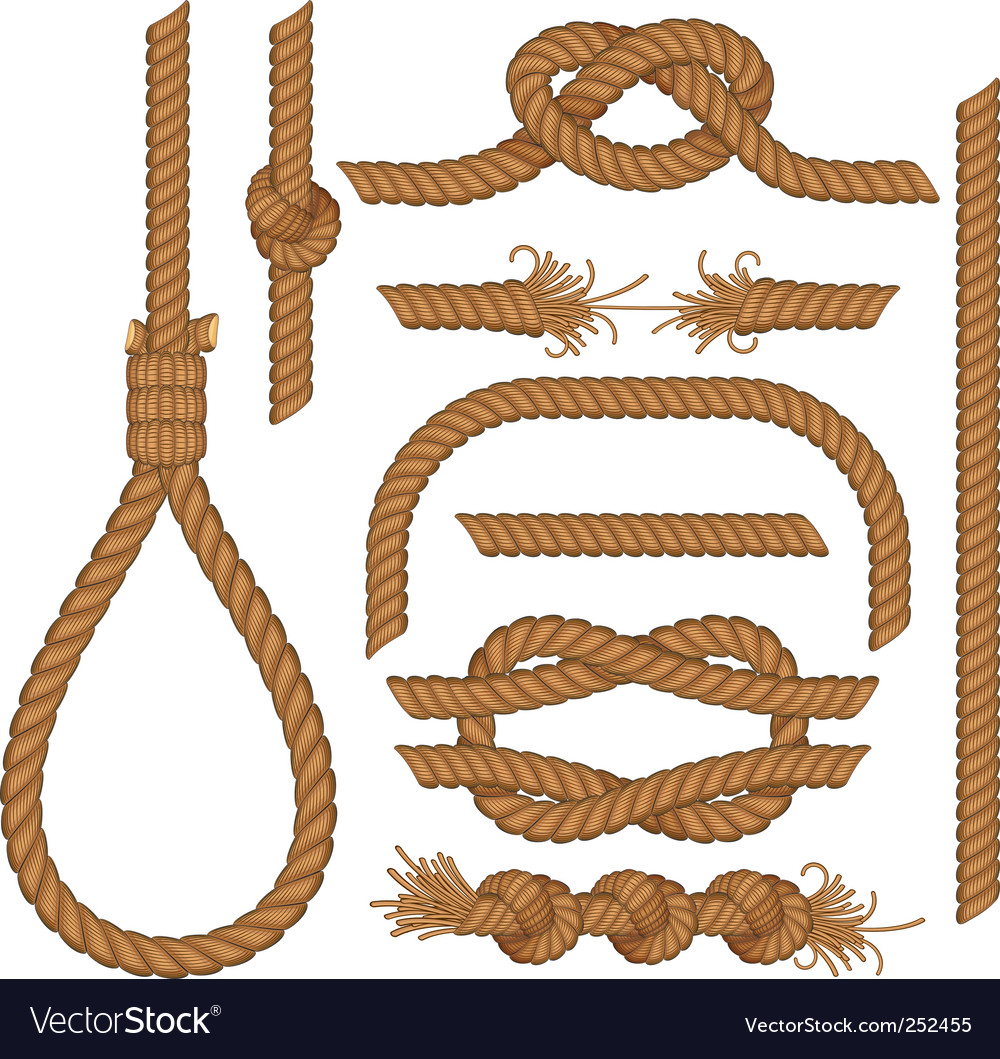 Rope collection vector image