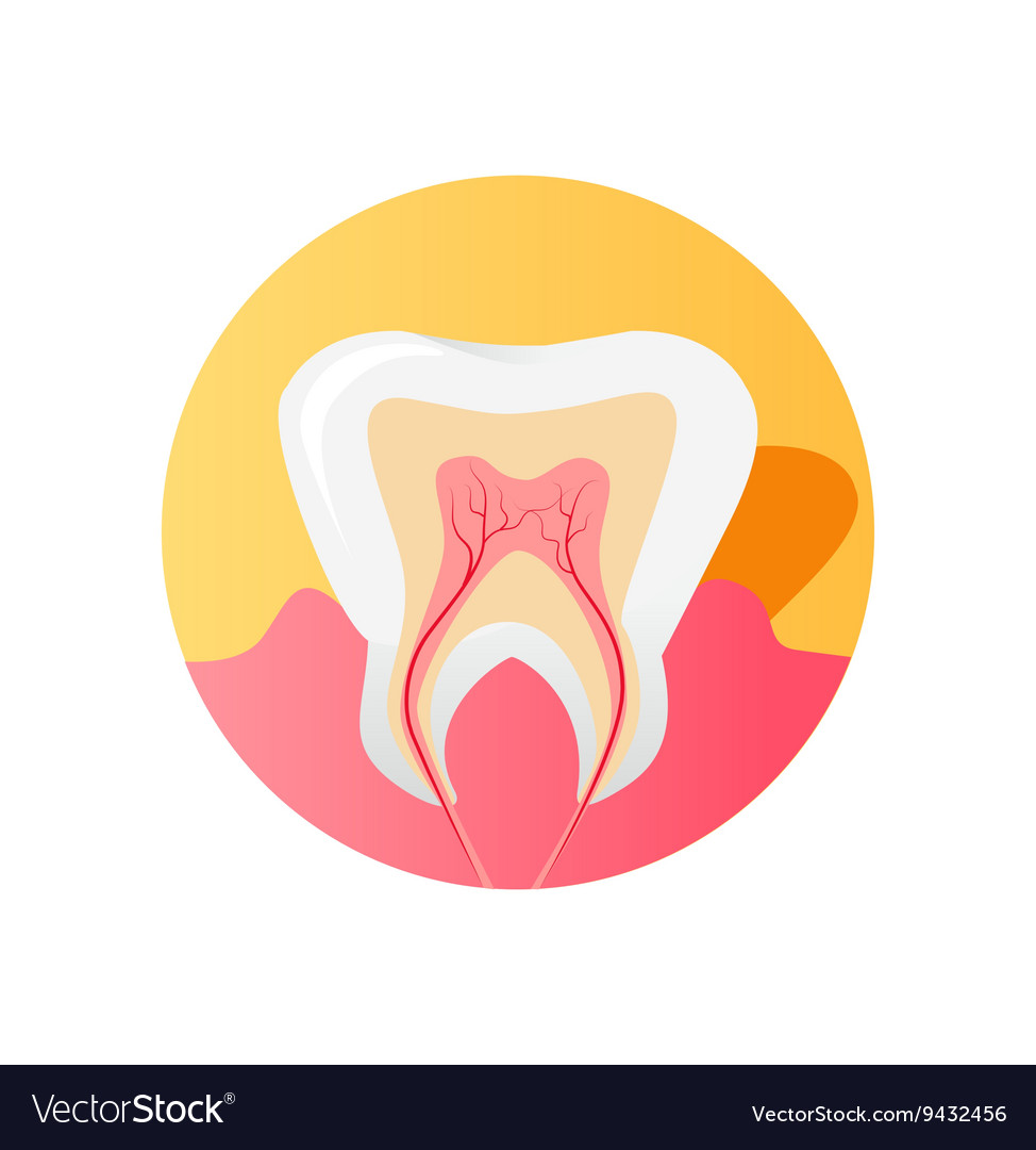 Icon of the Tooth in a Cut Isolated vector image