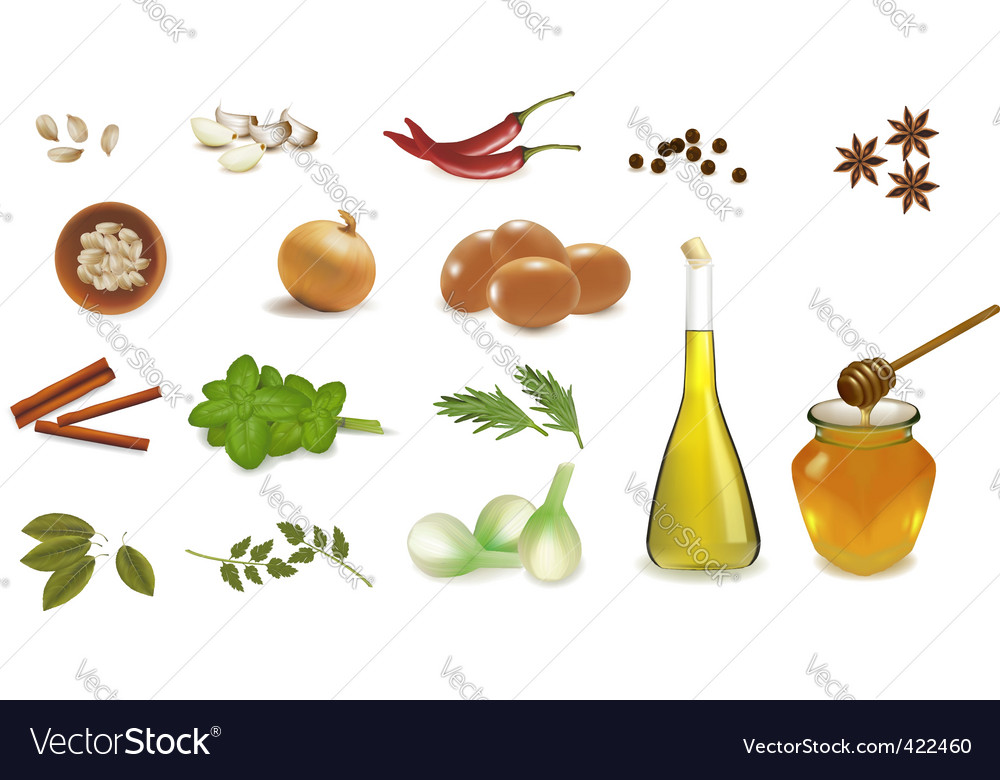 Group with spice vector image