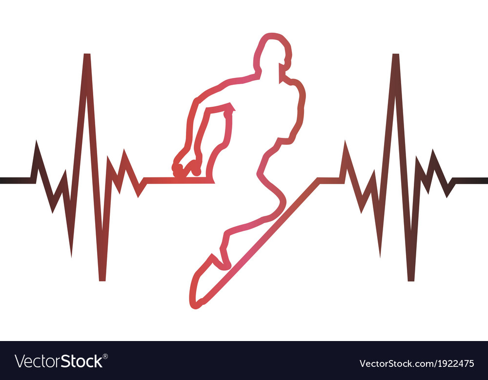 Cardiogram running vector image