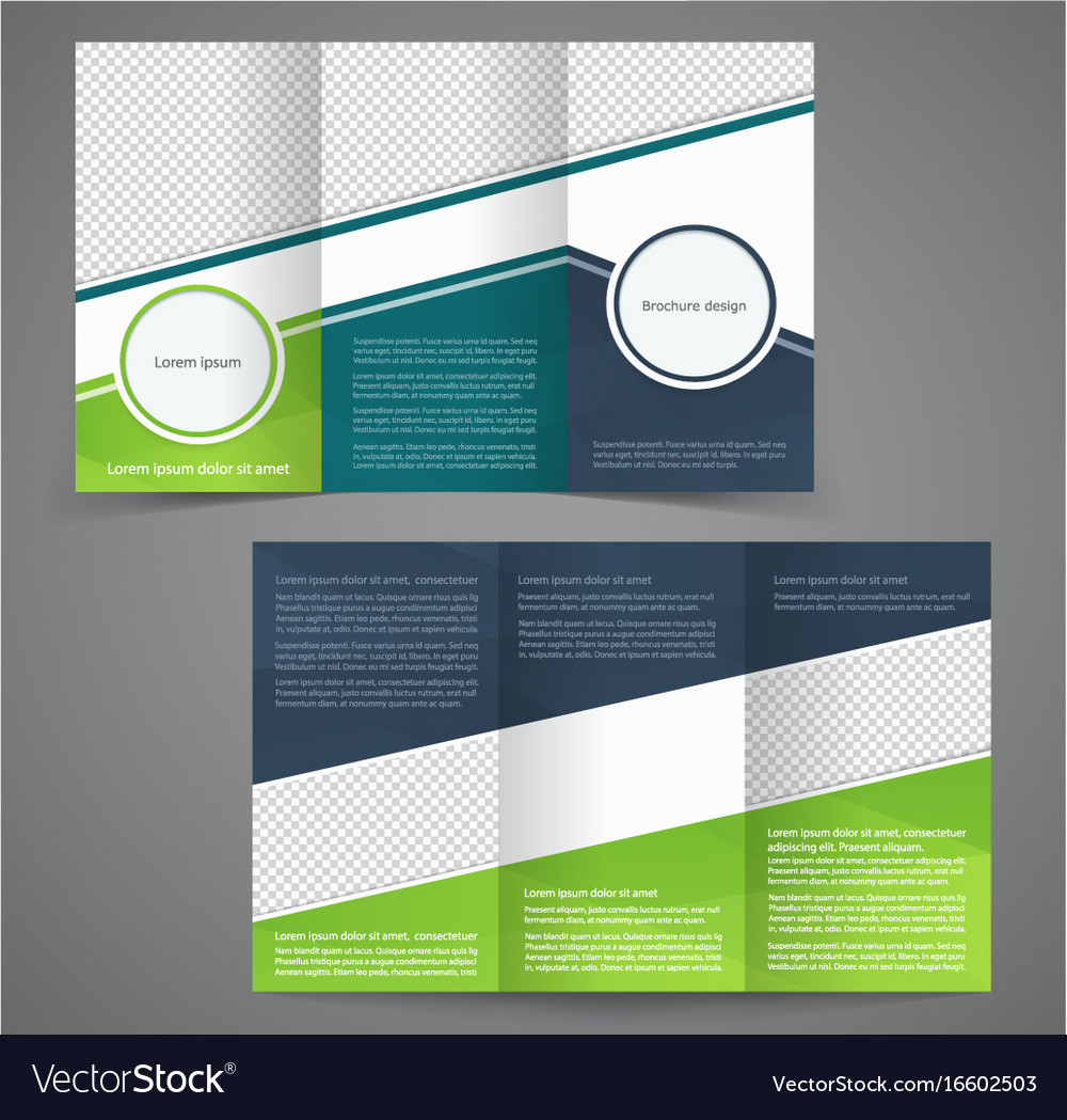 2 Fold Brochure Template Free: Tri-fold Business Brochure Template Two-sided Vector Image