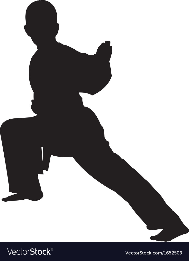 Karate boy silhouette vector image