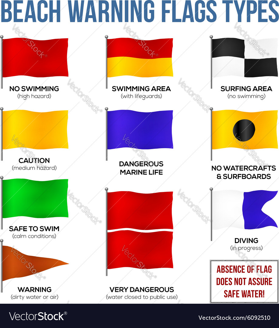 Beach warning flags types vector image