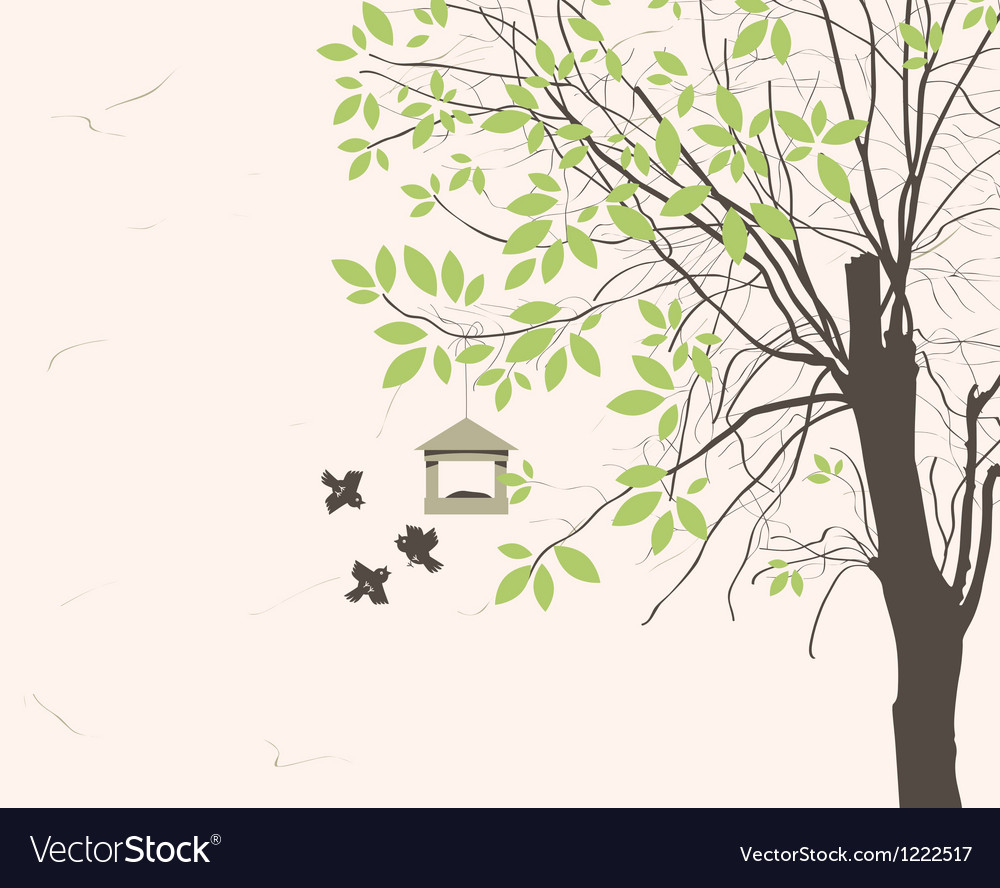 Bird feeders vector image