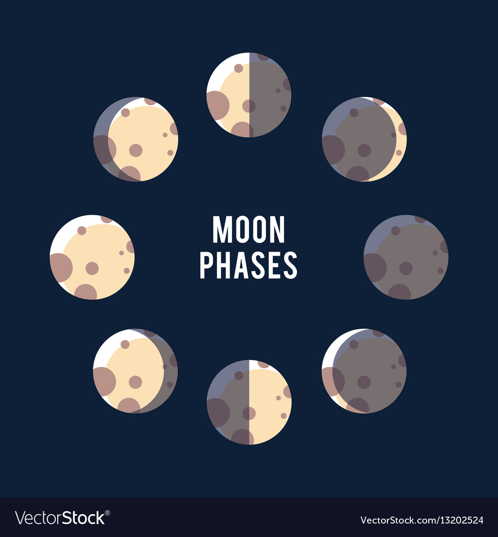 Phases of the moon light background vector image