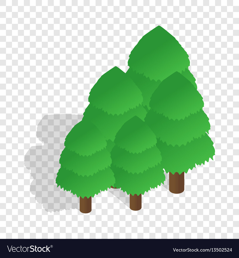 Trees isometric icon vector image
