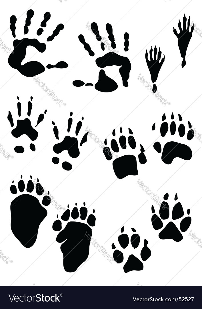 Prints vector image