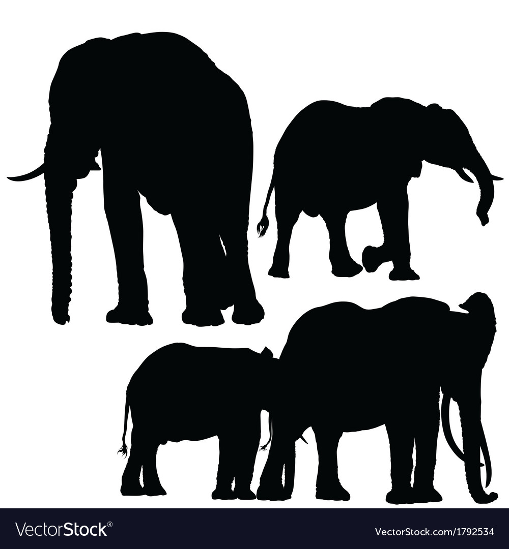elephants silhouettes vector image