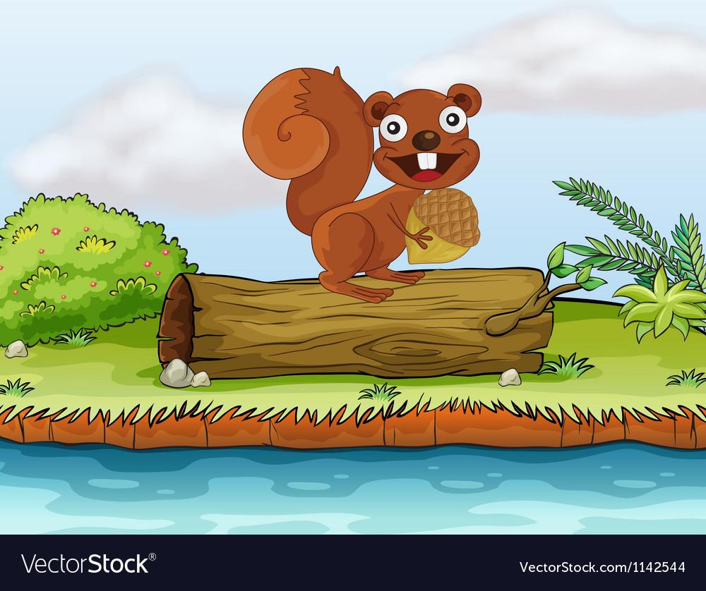 Squirrel loves to eat nuts vector image