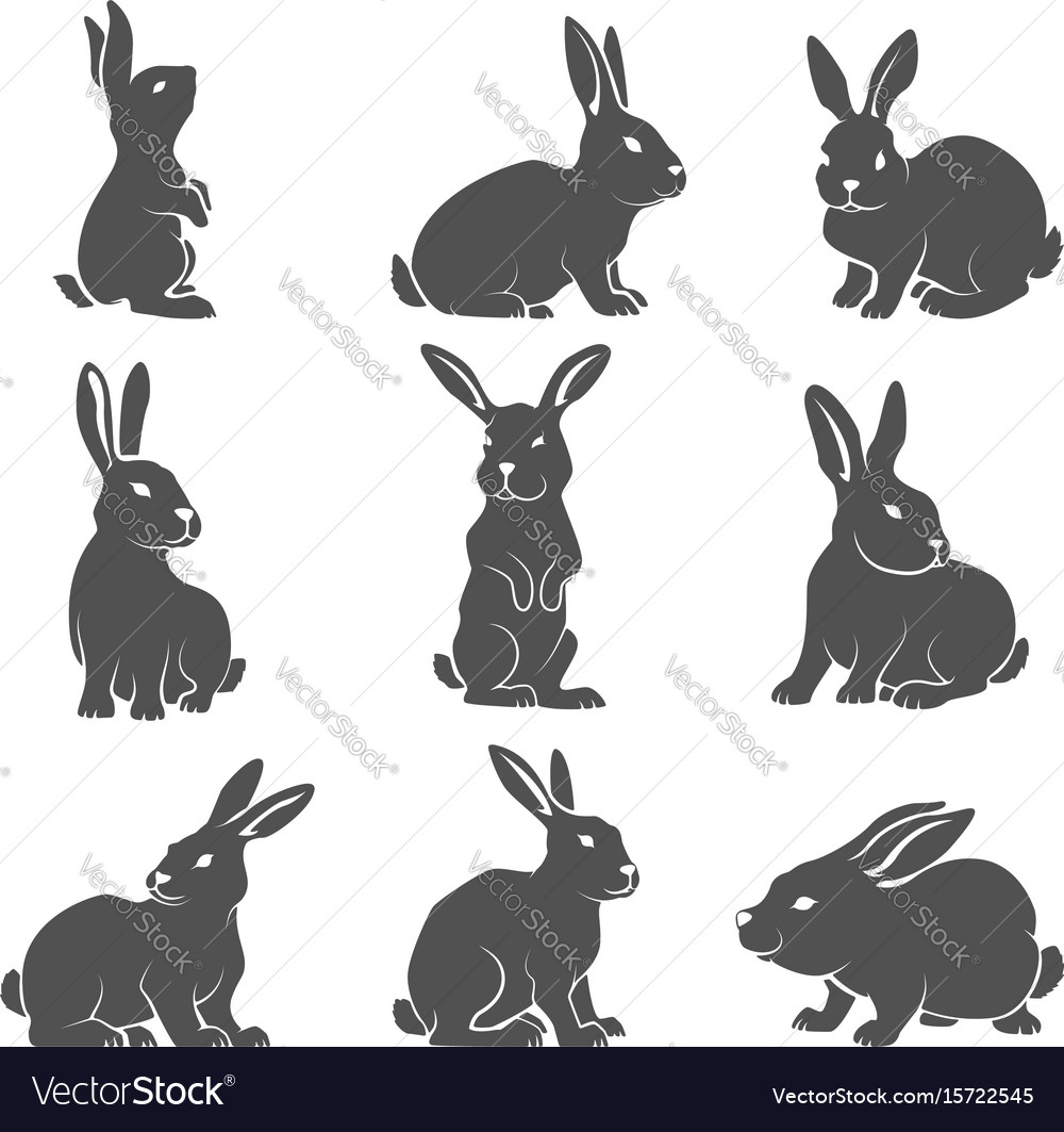 Set of rabbit icons isolated on white background vector image