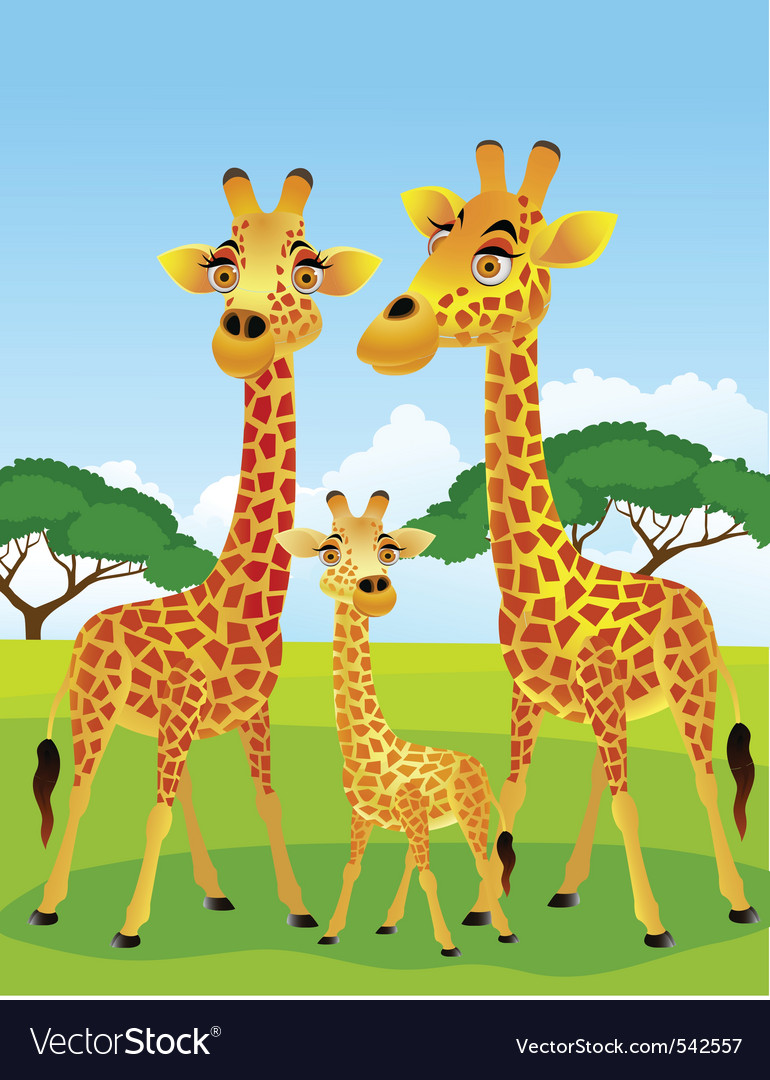 Giraffe family vector image