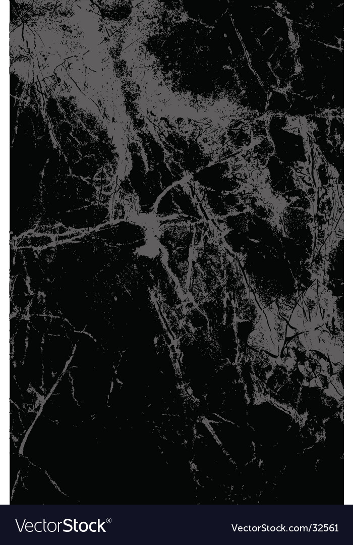 Black marble vector image