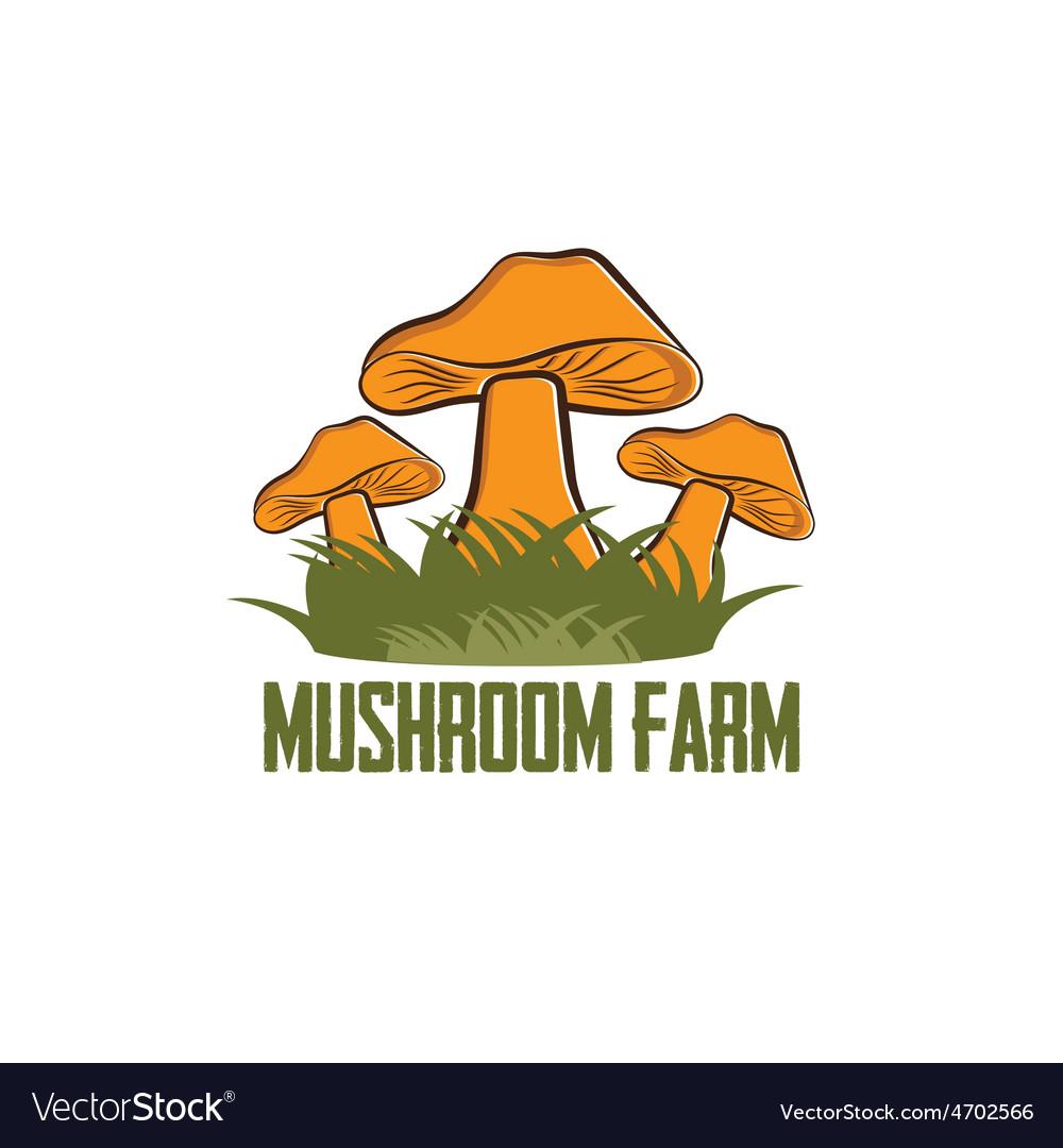 Mushroom farm design template vector image