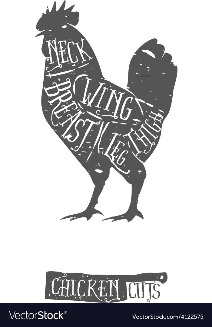 Vintage typographic chicken cuts diagram vector image