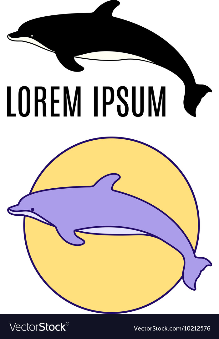 Dolphin emblems vector image