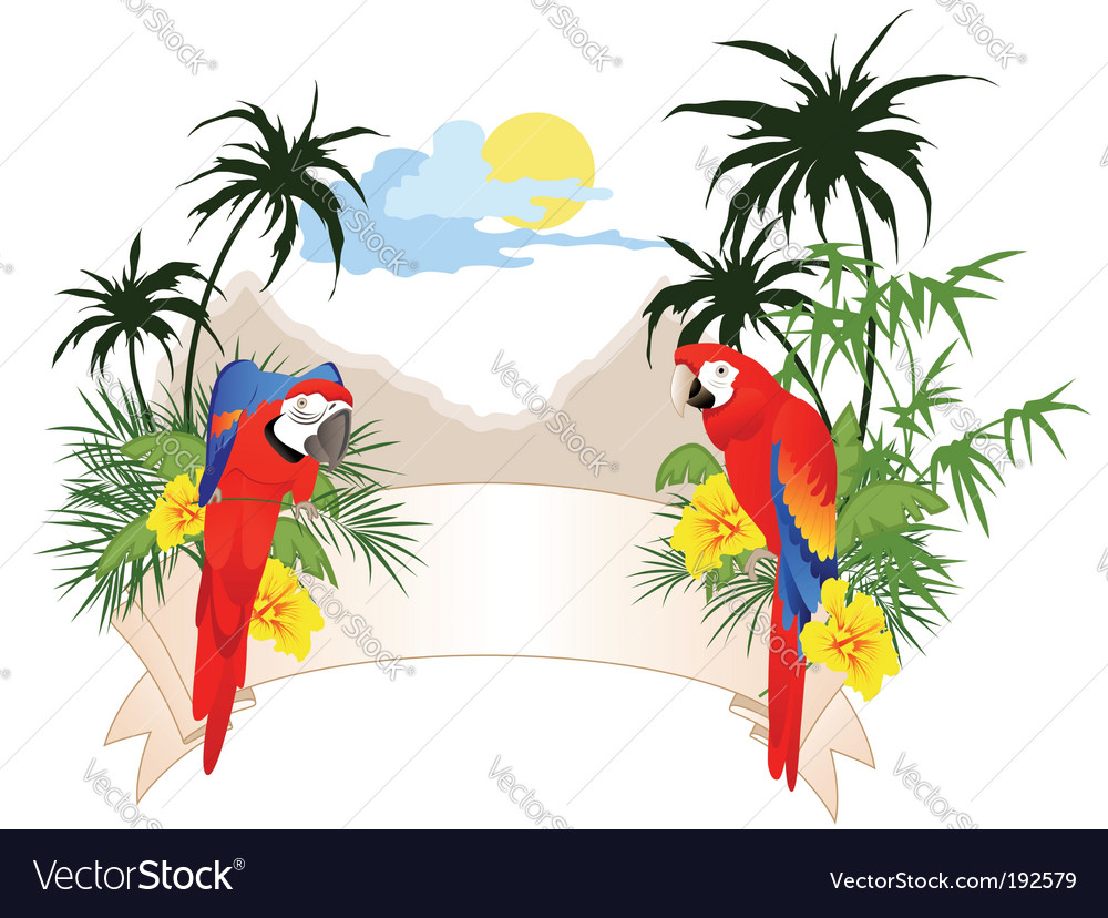 Summer banner with parrots vector image
