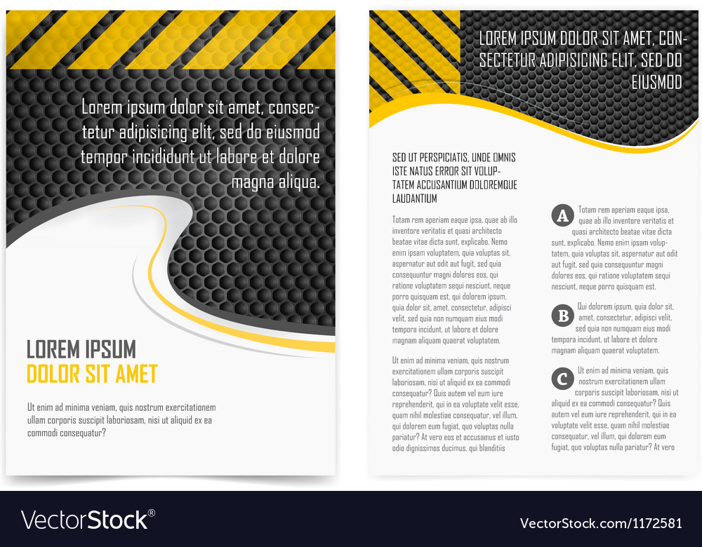 Broshure pages Template vector image