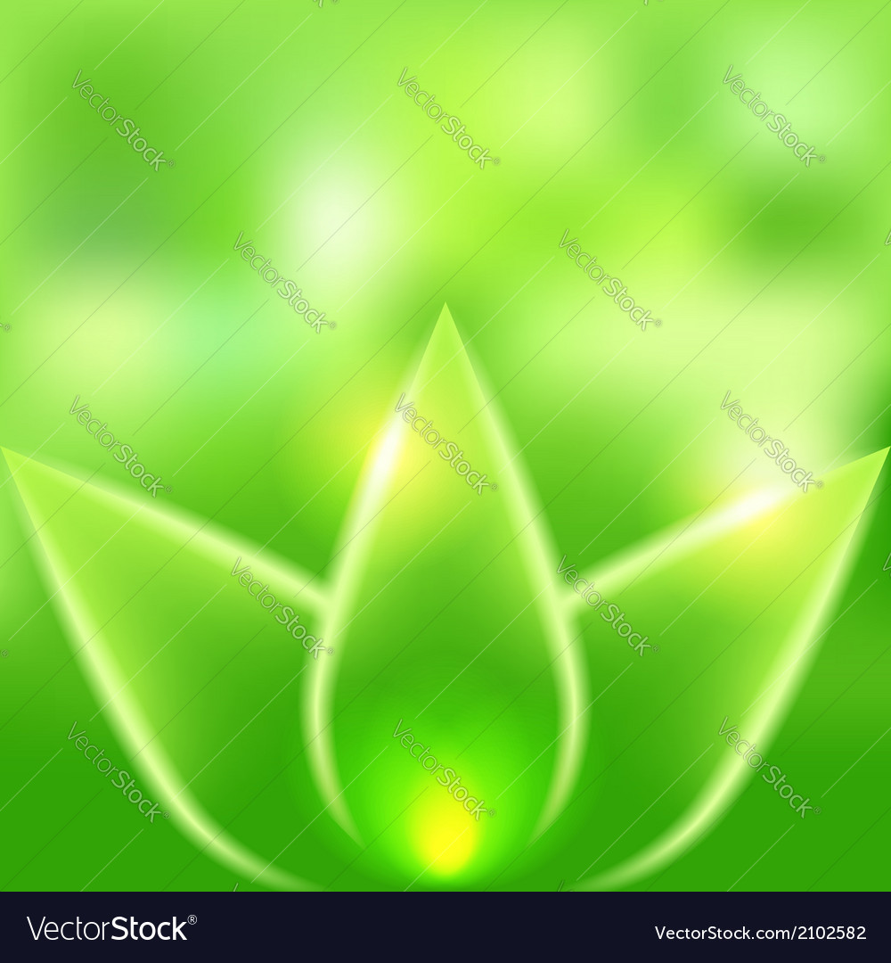 Green leaves blurred background vector image