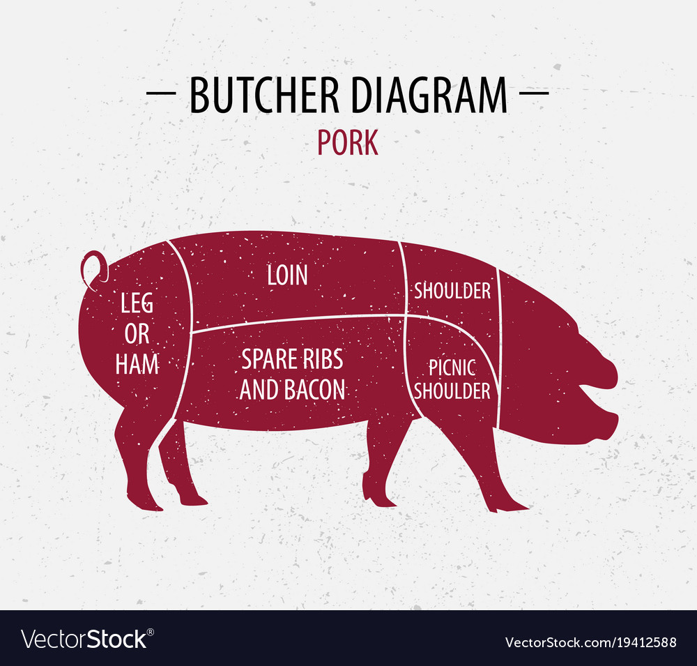 Cut of pork poster butcher diagram royalty free vector image cut of pork poster butcher diagram vector image pooptronica