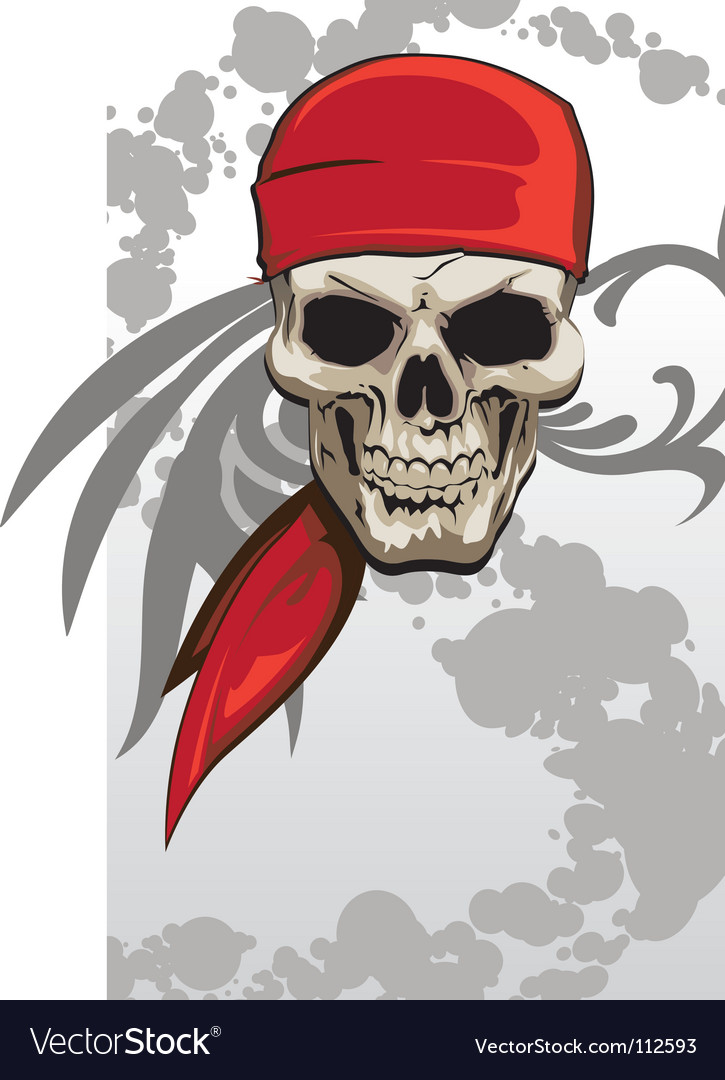 Pirate skull with bandanna vector image