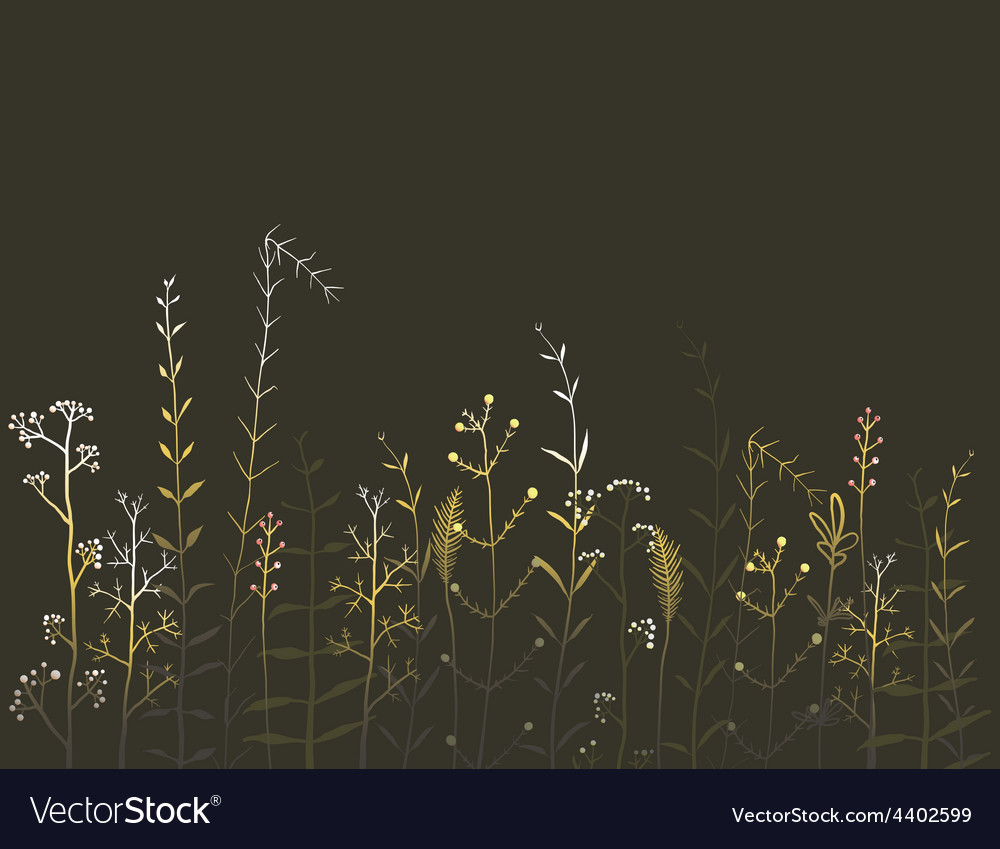 Wild Field Flowers and Grass on Black Background vector image