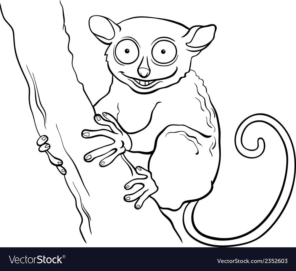 Tarsier animal cartoon coloring book vector image