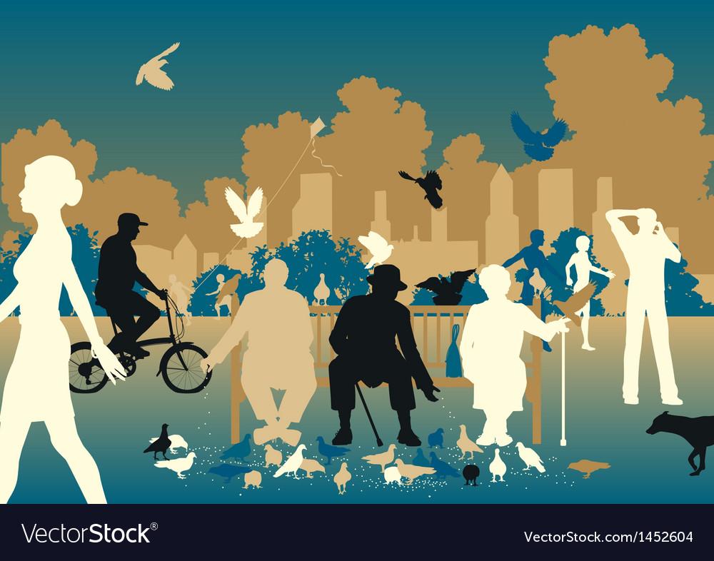 Feeding pigeons vector image