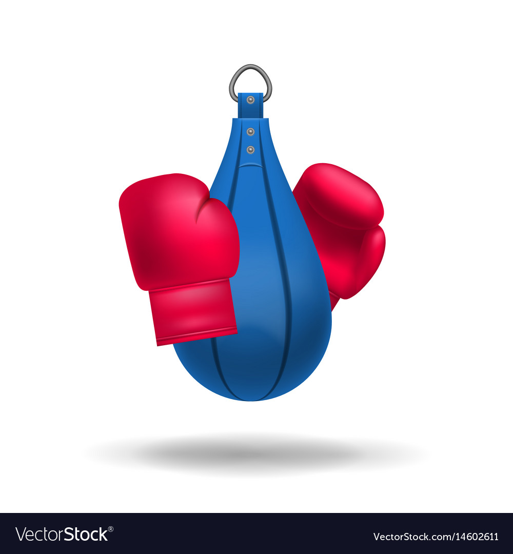 Realistic boxing gloves and punching bag vector image