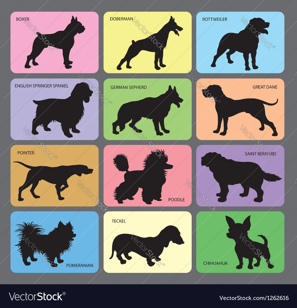Dog silhouette cards 1 vector image