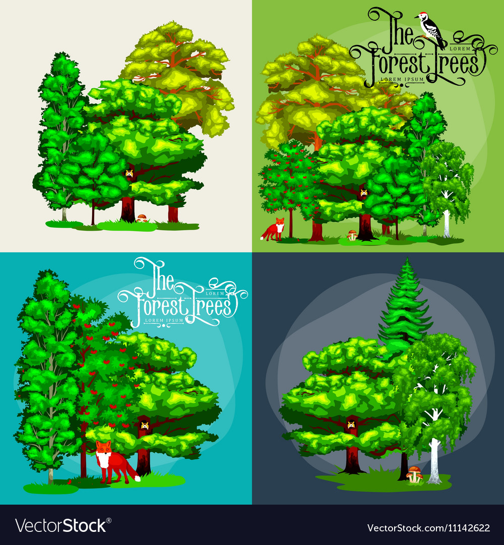 Forest green trees on the grass bush in summer vector image