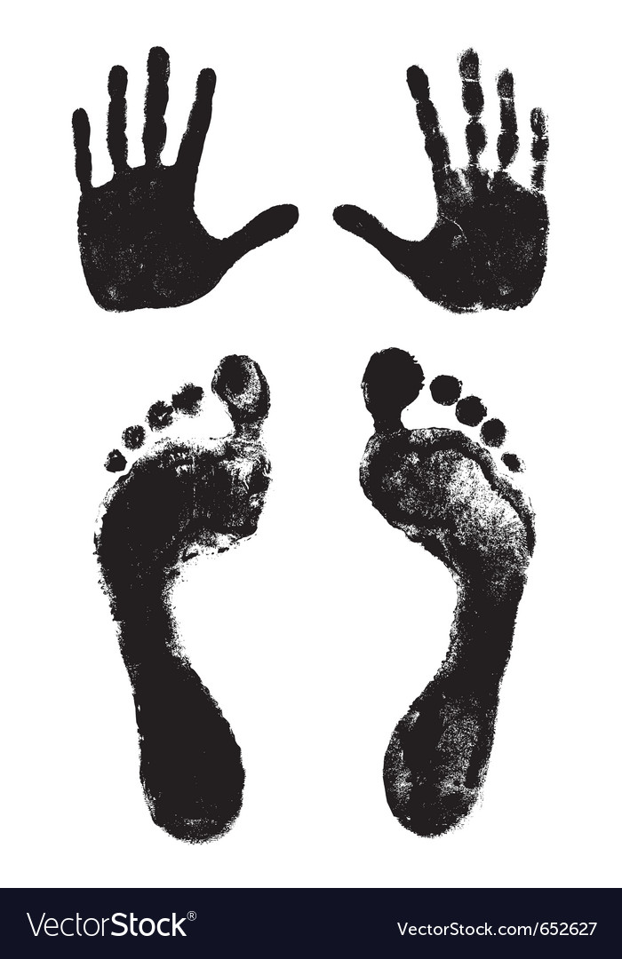 Footprints and handprints vector image