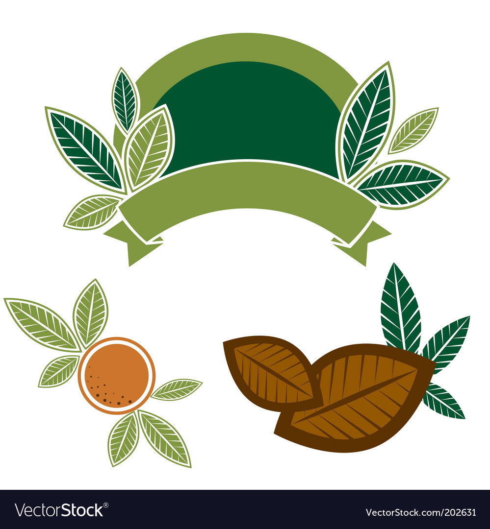 Food design elements with leafs vector image