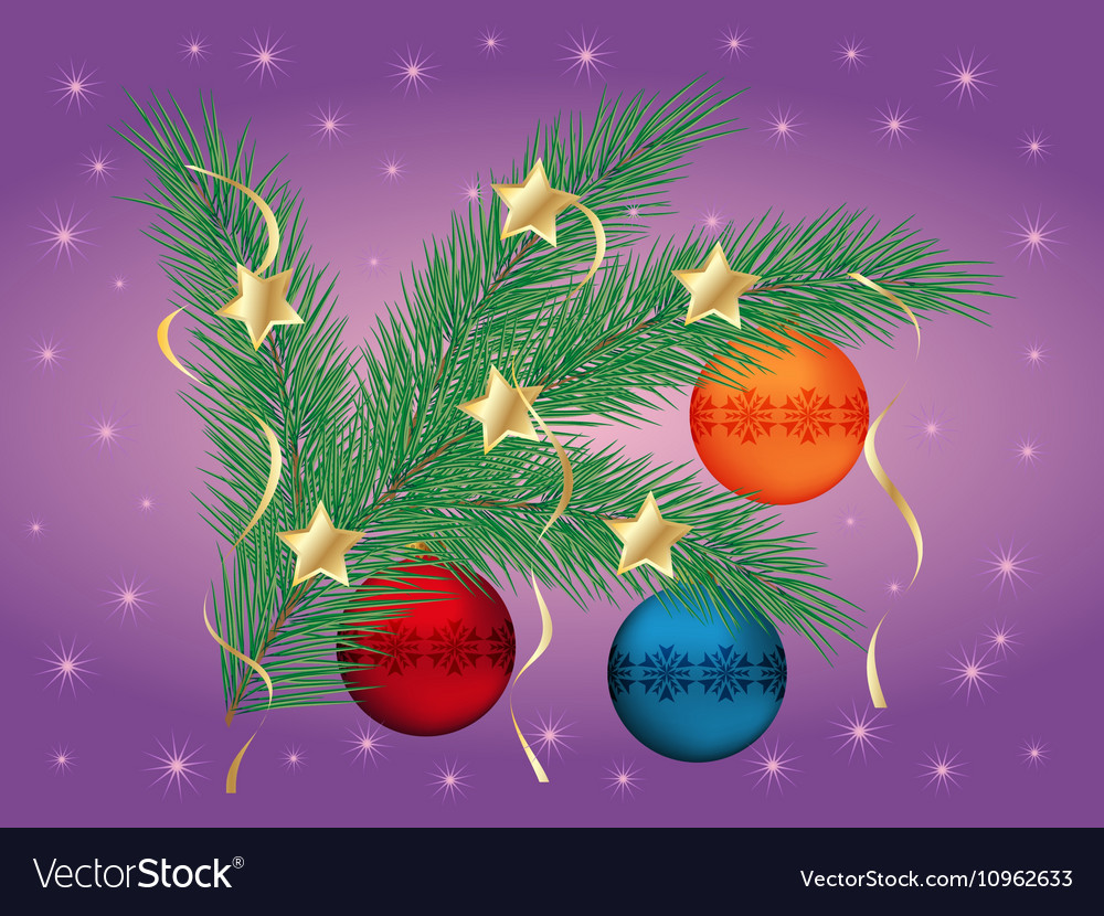 Christmas pine branch vector image