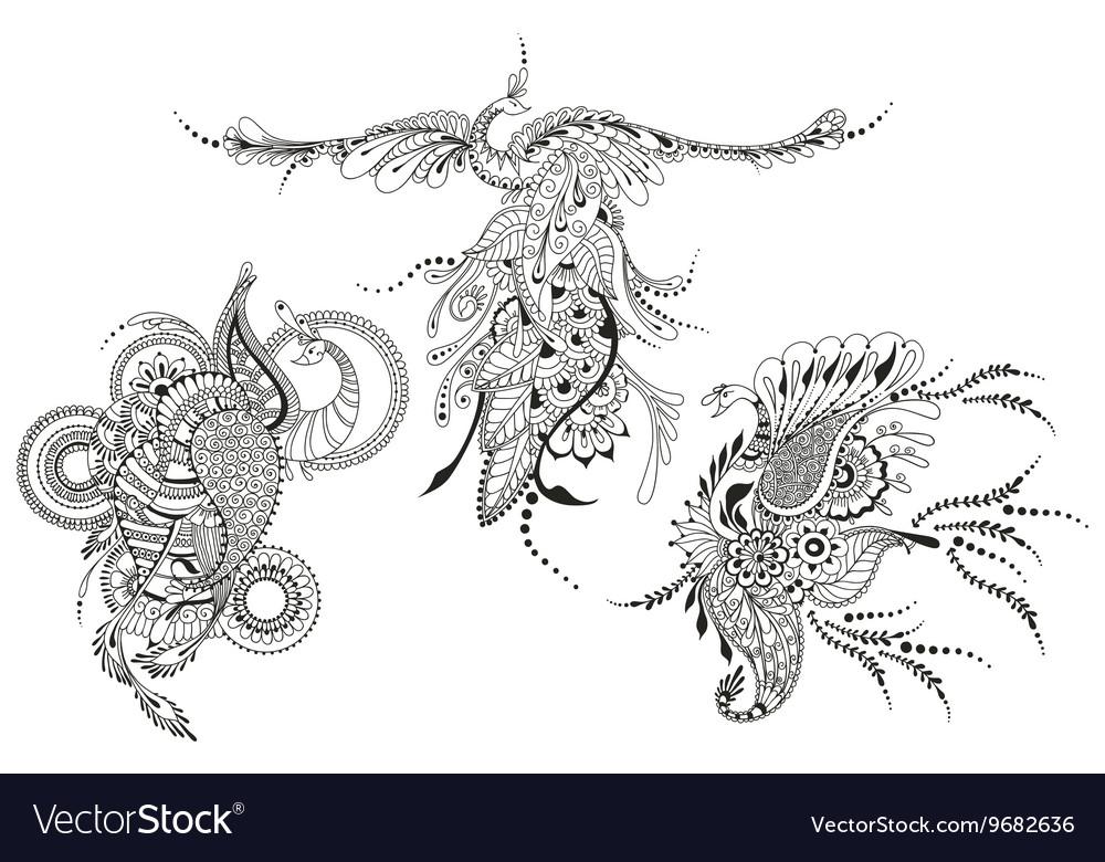 Bird Phoenix three Peacocks for tattoo template vector image