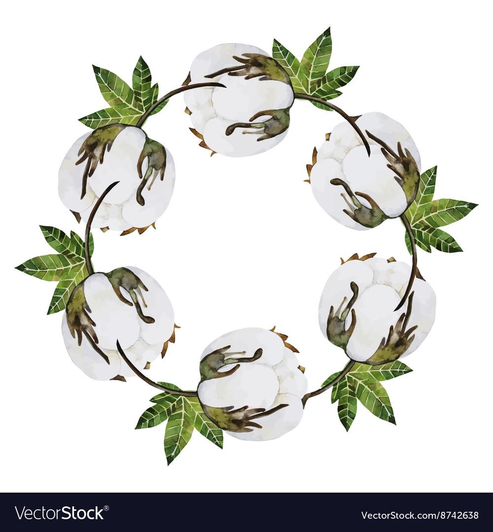 Watercolor cotton wreath vector image