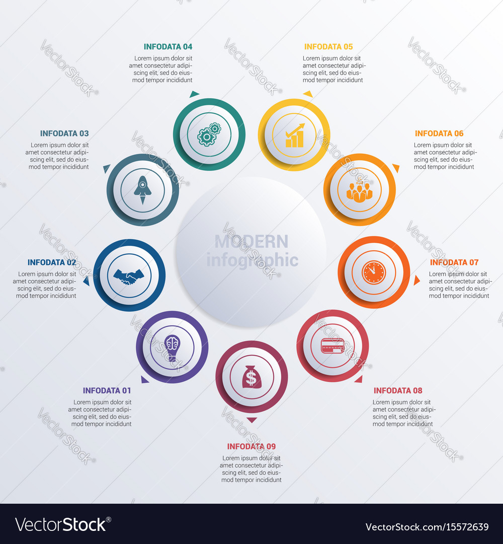 Modern infographic diagram business vector image