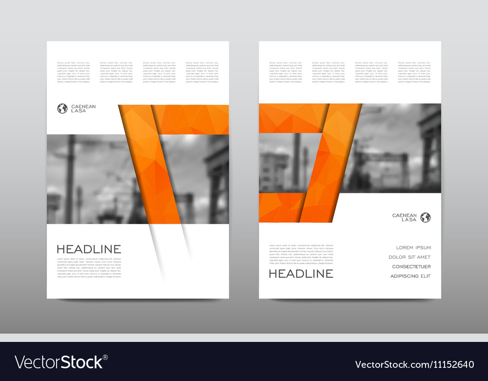 Brochure Layout Template Flyer Design Royalty Free Vector - Brochure layout template