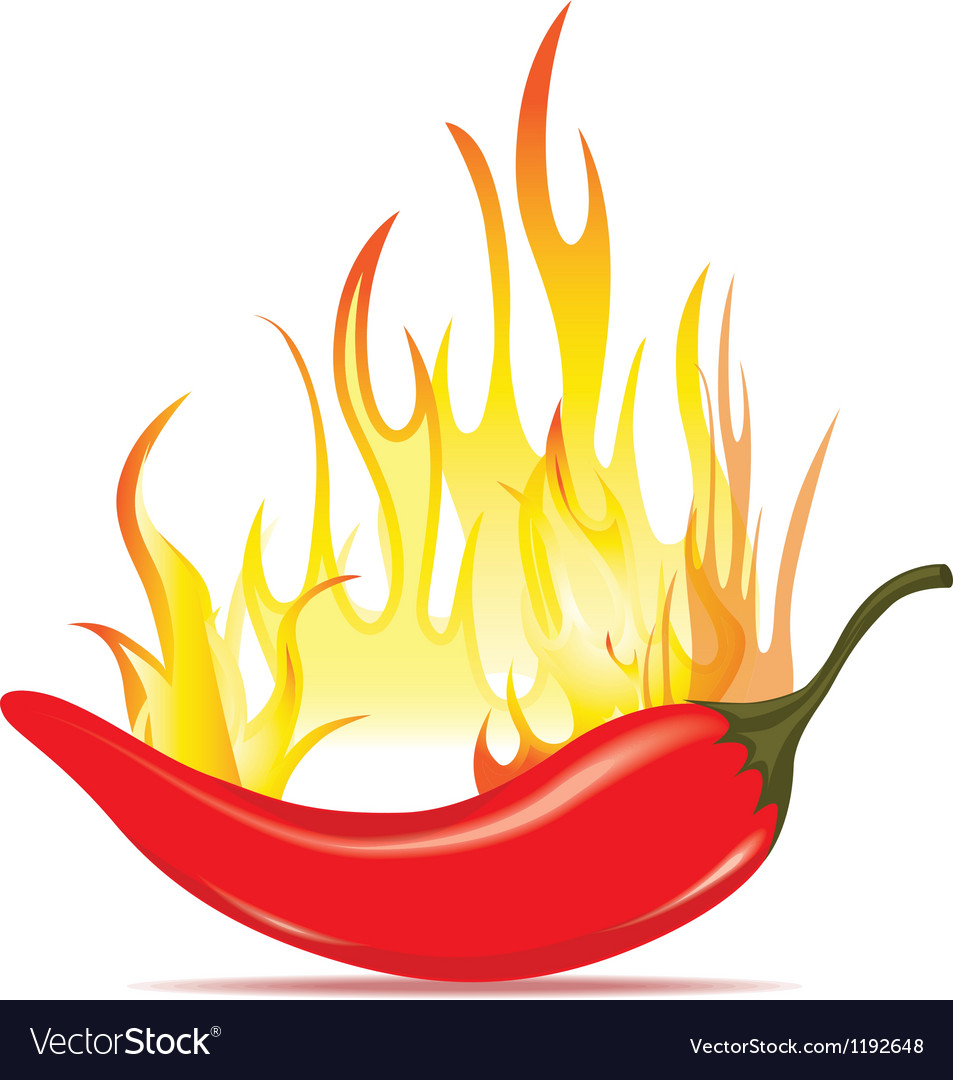 Hot chilli pepper in energy fire vector image