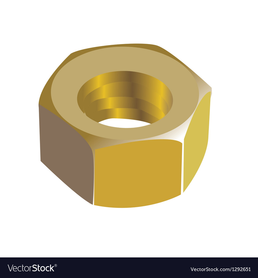 Golden nut vector image