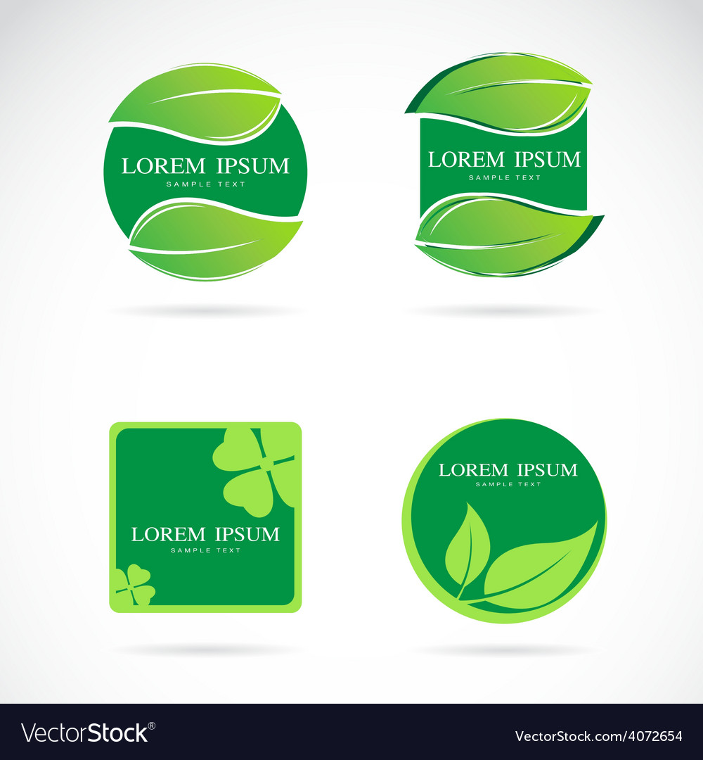 Leaf frame vector image