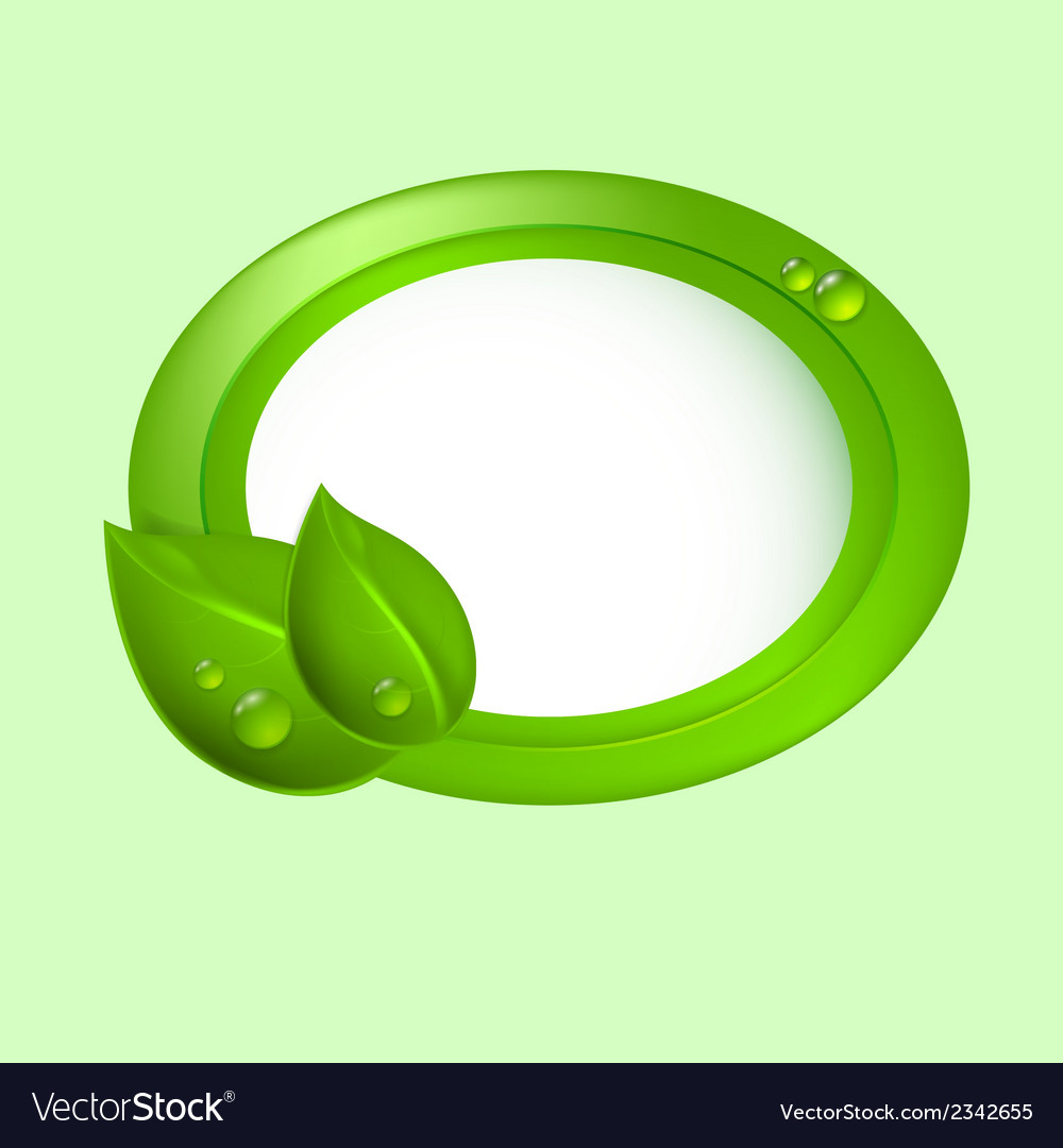 Green leaves with circle vector image