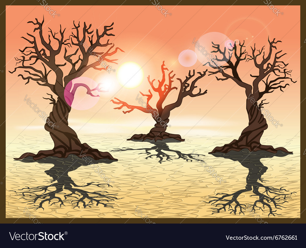Desert with cracked earth vector image