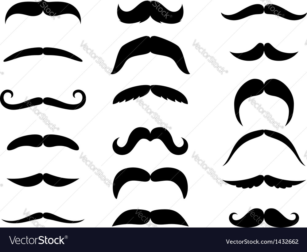 Black moustaches vector image
