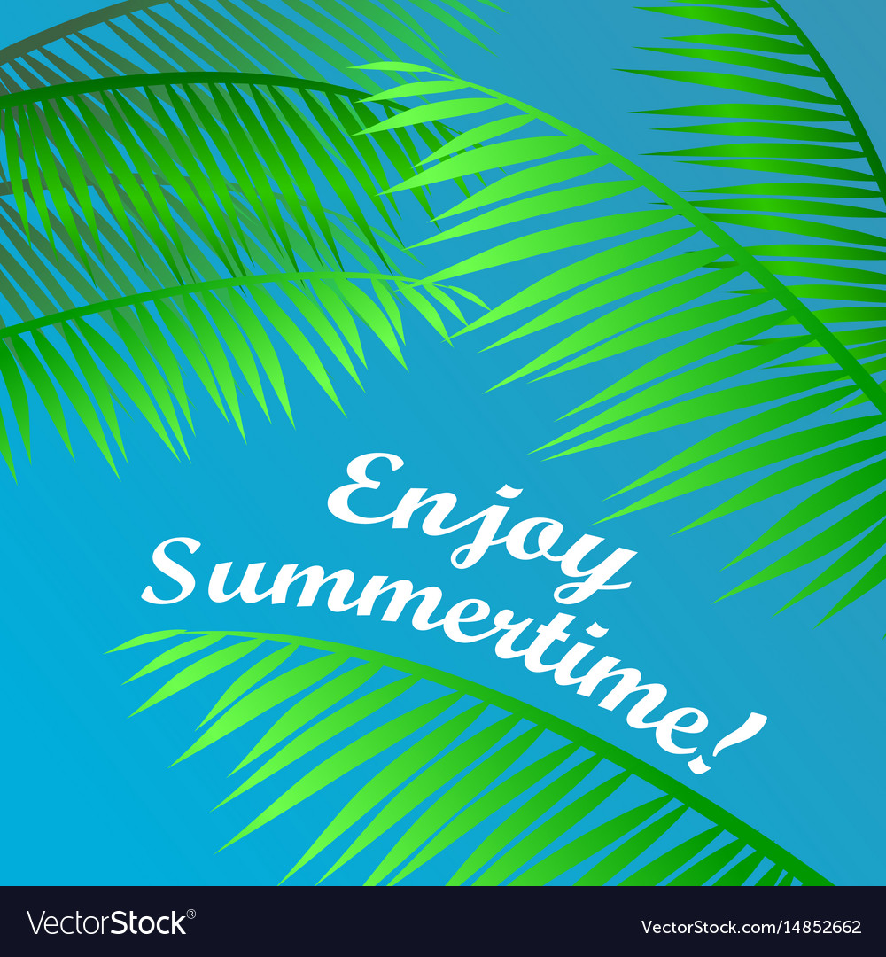 Palm leaves on blue sky background vector image