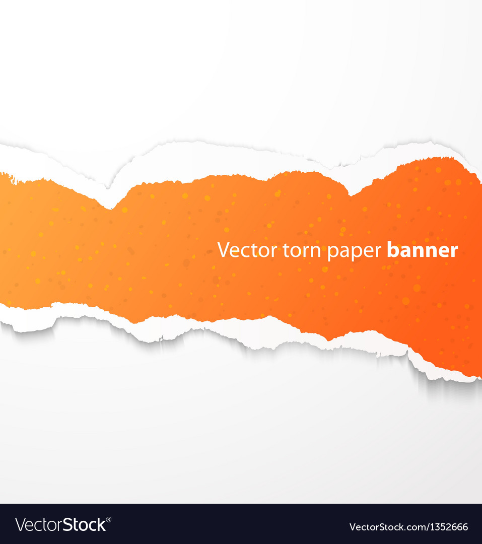 Torn paper banner vector image
