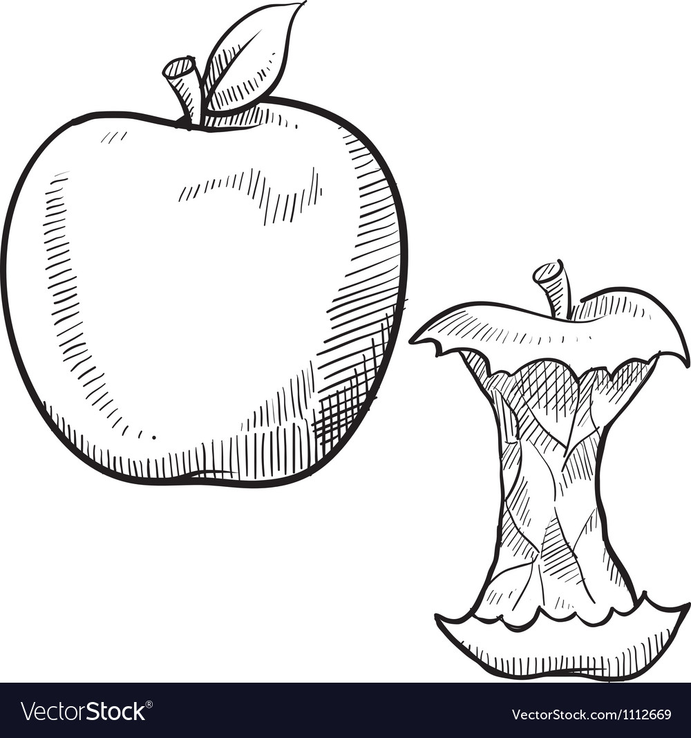 Doodle apple core vector image